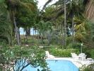 Piscine des bungalows Guadeloupe