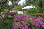 Hotel en Guadeloupe