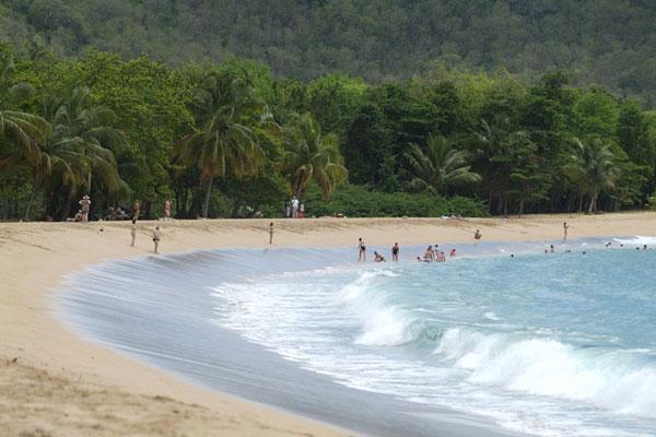Location-Fleurs-des-Iles-Bungalow-Guadeloupe