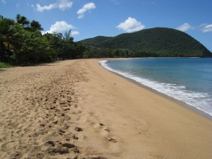 Plage de la location bungalow Guadeloupe