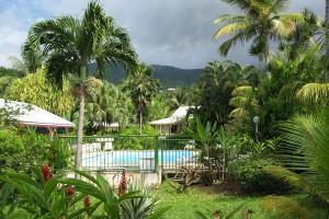 Location fleurs des iles bungalow guadeloupe la piscine - Bungalow guadeloupe piscine privee ...