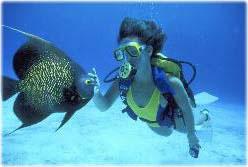 Plongee-Guadeloupe